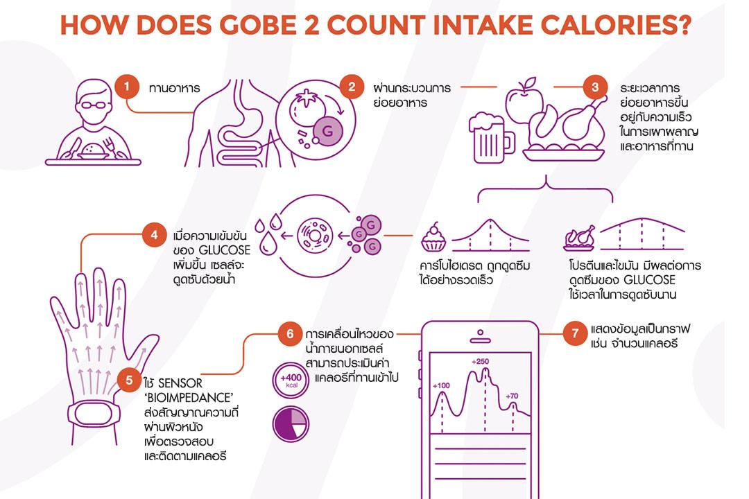 How does Healbe Gobe 2