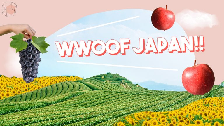 wwoof japan, wwoof คือ